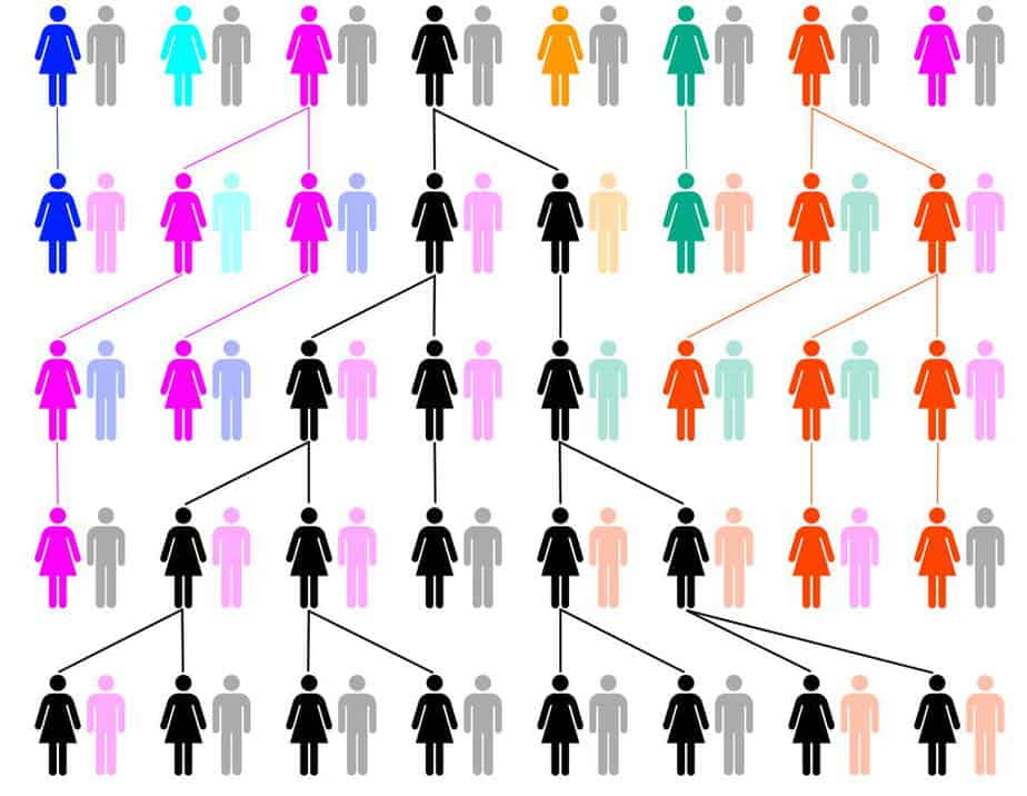 di truyền theo dòng mẹ ADN ty thể