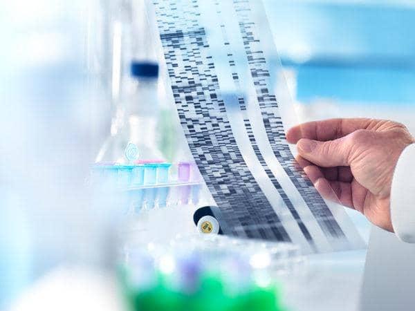 xét nghiệm adn là gì